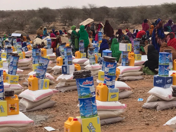 Dar Al Ber launches Dh2.8m relief campaign for famine-hit Somali people